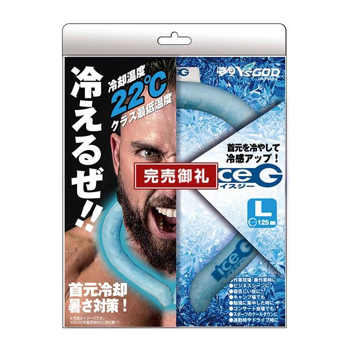 アイスジー ICEG
